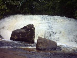 cachoeira_da_floresta