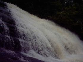 cachoeira_da_floresta2